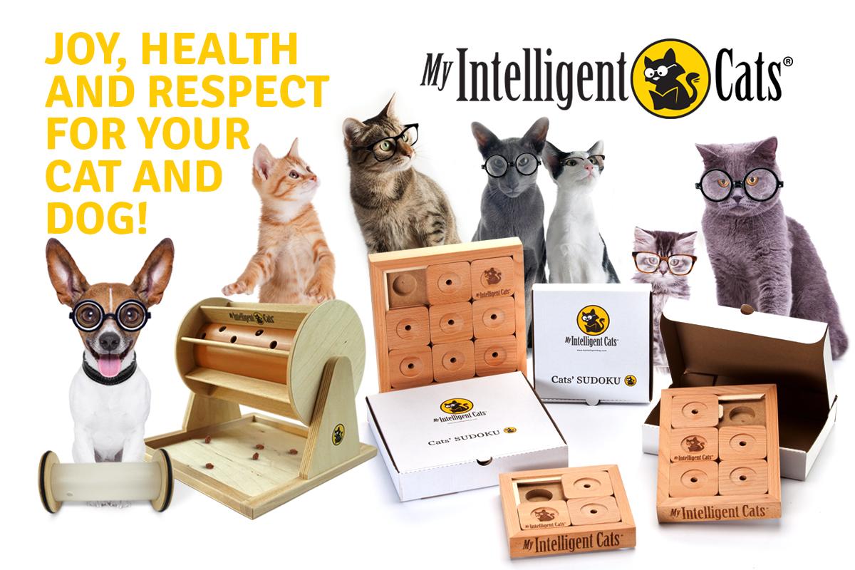 myintelligentdogsandcats